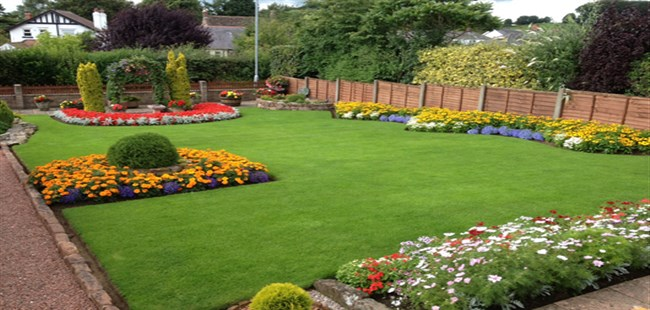 Beautiful_Lawn