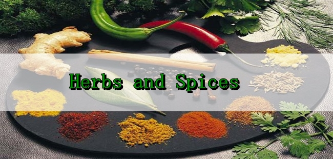 Let's Play With Herbs And Spices