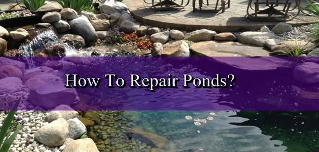 How To Do Pond Repair?