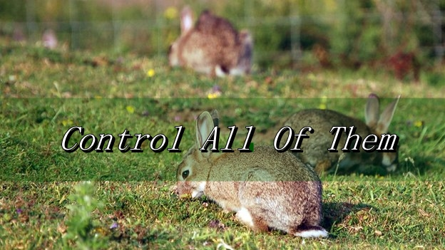 How Can I Control The Animals?