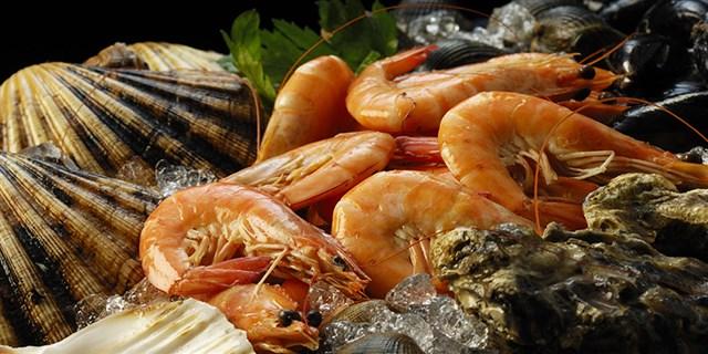 shellfish (640 x 320)