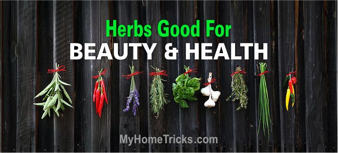 Herbs for Health and Beauty 2