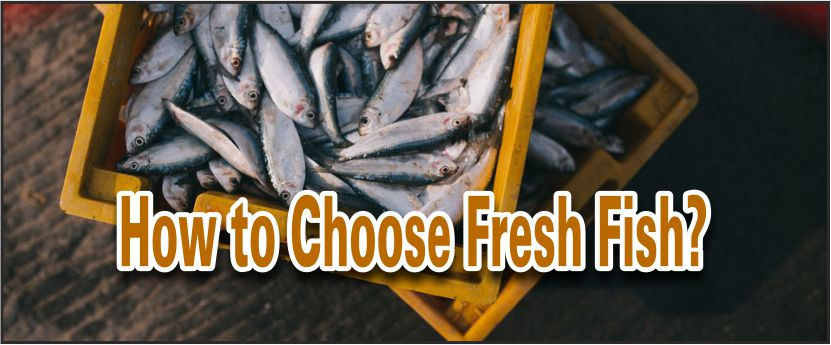 Choose Fresh Fish