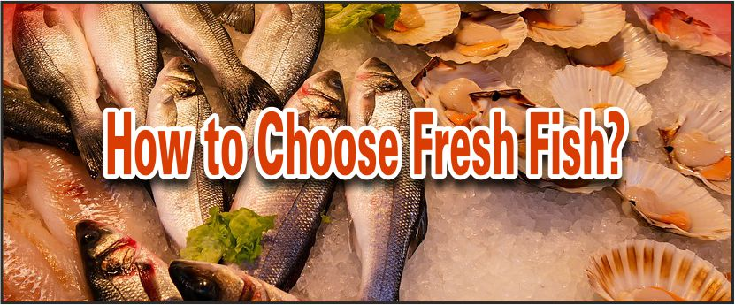 Choosing Fresh Fish