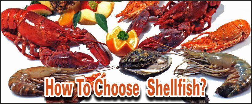 choosing shellfish
