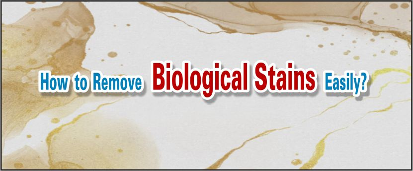 remove biological stains